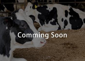 家畜業者向け商品